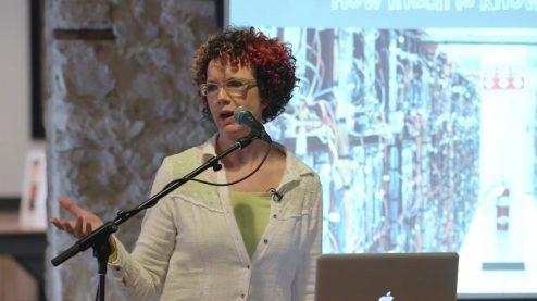 Laurie Frick Data Artist